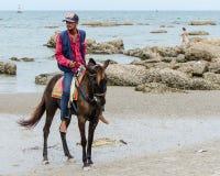 Horse on the beach. Stock Photo