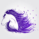 Horse beautiful. Illustration of beautiful horse with a mane of developing Royalty Free Stock Photo
