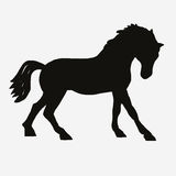 Horse black silhouette vector Stock Photo