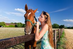 Horse and blond girl in paddock on summers Stock Photography