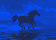 Horse in blue Royalty Free Stock Photography