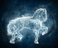 Horse on blue background Stock Image