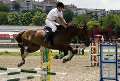 Horse Breaks A Barrier Stock Photo