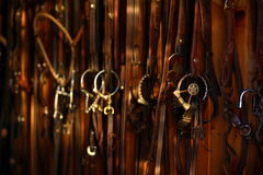 Horse bridles Stock Photo