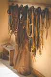 Horse bridles and western chaps. Horse bridles, leash, western chaps and old stool royalty free stock images