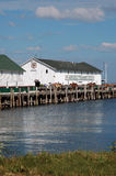 horse and buggies dockside in michigan Mackinaw island Stock Photos