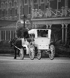 Horse and Buggy Royalty Free Stock Images