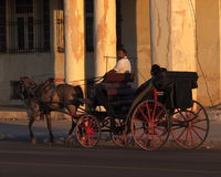Horse And Buggy In Havana Cuba Royalty Free Stock Photo