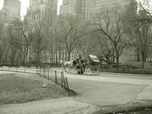 Horse and buggy ride, central park nyc. In sepia stock image