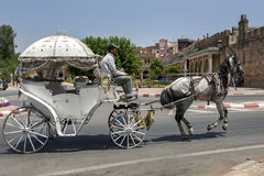 A horse and buggy ride through the streets of Meknes in Morocco looking for customers. Stock Image