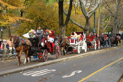 Horse and buggy riders. November 20,2007-New York-a picture of horse and buggy riders in Central Park in late Autumn Royalty Free Stock Images