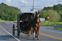 Horse and Buggy in rural Pennsylvania stock photo