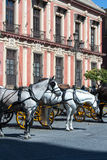 Seville horse and Buggy Stock Photos