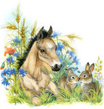 Horse and bunny. background with flower. illustration watercolor