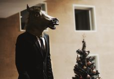 Horse business man Stock Photography