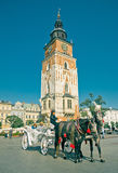 Horse Cab On Main Square in Krakow Stock Image
