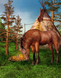 Horse in a camp Stock Photos