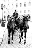 Horse car Royalty Free Stock Photos
