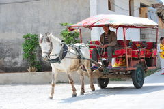 Horse car Stock Images