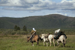 Horse caravan Royalty Free Stock Photo
