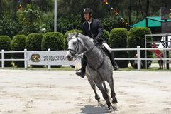 Horse Carnival Selangor Turf Club: Showjumping Stock Images