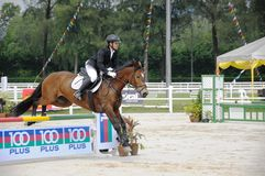Horse Carnival Selangor Turf Club: Showjumping Stock Photo