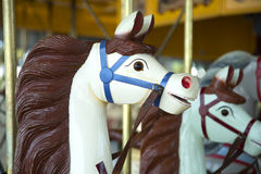 Horse in a carousel. White horse with brown mane in a carousel Stock Image