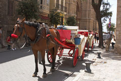 Horse & carriage 1. Horse & carriage in busy street Royalty Free Stock Images