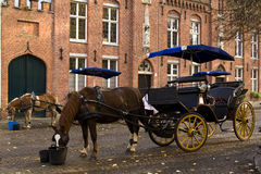 Horse and carriage. Waiting for tourists in Bruges, Belgium Stock Photo