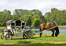 Horse with carriage Stock Photography