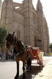 Horse and Carriage. Standing outside the Cathedral in Palma de Mallorca Stock Images