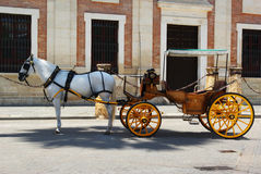 Horse and carriage. To hire at Plaza del Triumfo Seville Spain stock image