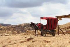 Horse carriage. In Petra, Jordan Stock Photos
