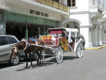 Horse and carriage. Horse is hitched at the carriage for tourist in the colonial area at the Santo Domingo de Guzman, the capital of the Dominican Republic Stock Image