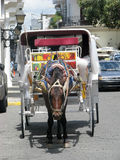 Horse and carriage. Horse is hitched at the carriage for tourist in the colonial area at the Santo Domingo de Guzman, the capital of the Dominican Republic Royalty Free Stock Photos