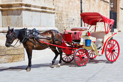 Horse with carriage Royalty Free Stock Photo