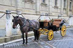 Horse carriage 3 Stock Photography