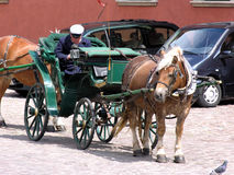 Horse carriage. Awaiting carriage. Cars in the background. Old and new in one place Royalty Free Stock Images