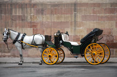 Horse with a carriage. A white horse pulling a carriage Stock Photos