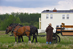 Horse Carriage. A carriage driver adjusts the reins on his horses stock photo
