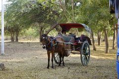 Horse carriage for ancient city tour in Myanmar Stock Photos