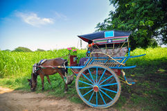 Horse carriage in Bagan, Myanmar Stock Image