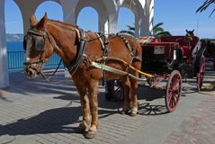 Horse & carriage, Balcony of Europe, Nerja, Spain. Horse drawn carriage along the Balcony of Europe (Balcon de Europa), Nerja, Costa del Sol, Malaga Province Stock Photos