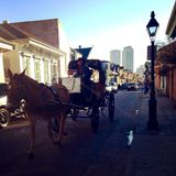 Horse and Carriage on Bourbon Street in New Orleans Louisiana Royalty Free Stock Image