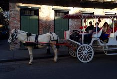 Horse and Carriage on Bourbon Street in New Orleans Louisiana Stock Images