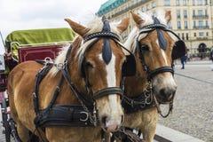 Horse carriage in Brandenburg gate, Berlin, Germany. Berlin, Germany - April 12, 2017: Horse carriage for tourists in Brandenburg gate in Berlin, Germany on stock photos
