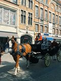 Horse carriage in Brussels street. Royalty Free Stock Image