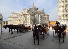 Horse and carriage cabs in Pisa, Italy Royalty Free Stock Images