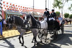 Horse carriage carrying tourists at the Seville fair. The horse ride is abitual at the Seville fair, it is done during the day for the enjoyment of visitors Stock Image