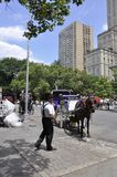 New York City,1st July: Horse Carriage at Central Park in Midtown Manhattan from New York City in United States. Horse Carriage at Central Park in Midtown royalty free stock photography